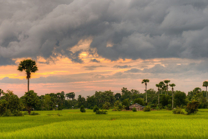 Cambodia_landscape_sunset_rice_field_hdr_10_32885-L